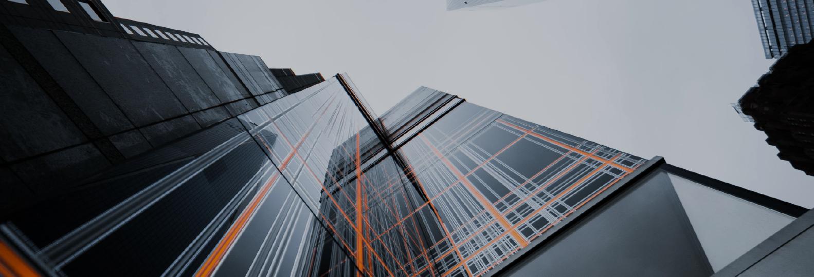 SAP Business One რეპორტები