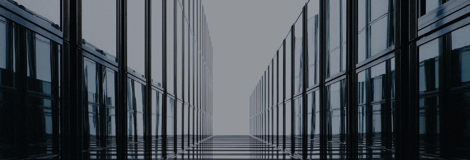 1C ERP  კომპანიის  ბიზნეს პროცესების სრული ავტომატიზაცია